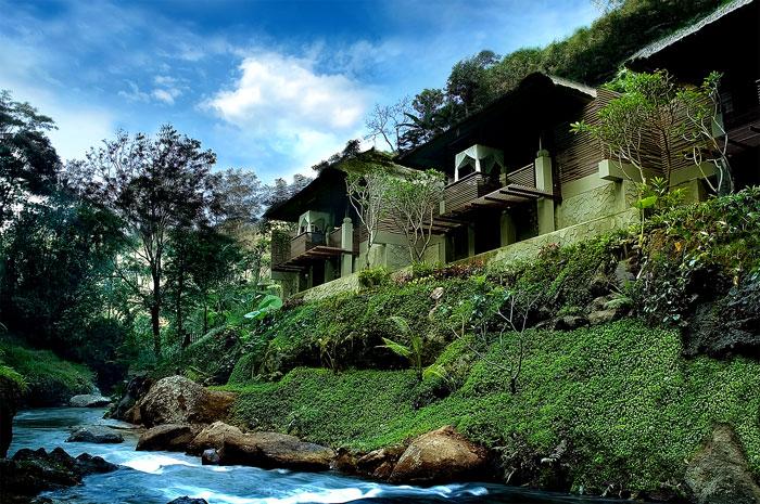 Beautiful View Green Lawn Natural Stone Frangipani Trees