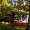 Big trees Iconic Antumalal Hotel stonw wall glass window Hotel In Chile
