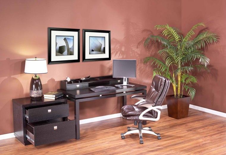 Brown Wall Wooden FLoor Indoor Plant Bron Swivel Chair