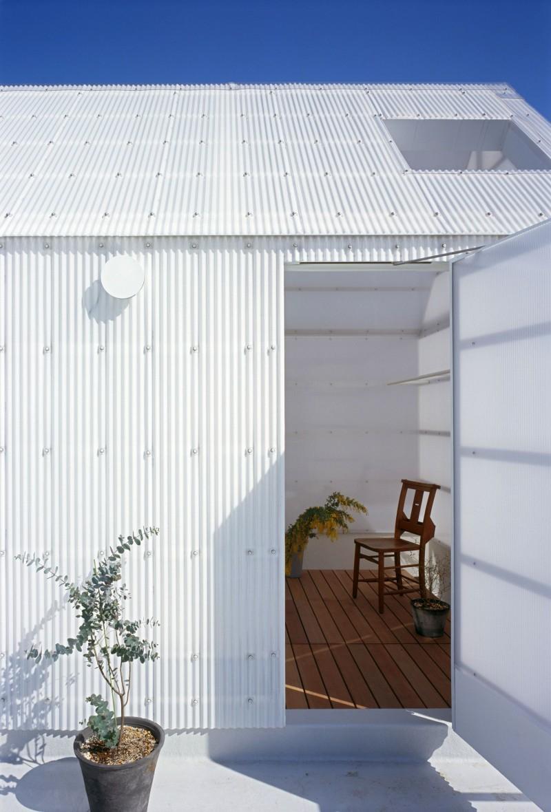 Corrugated roof sheet Ornamental plant Black pot Bright skylight