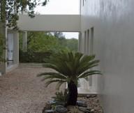 Desert Plants White Sand Grey Wall Minimalist Look