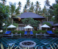 Exclusive  Beach Villas modern pool coconut trees The Lush Jungle