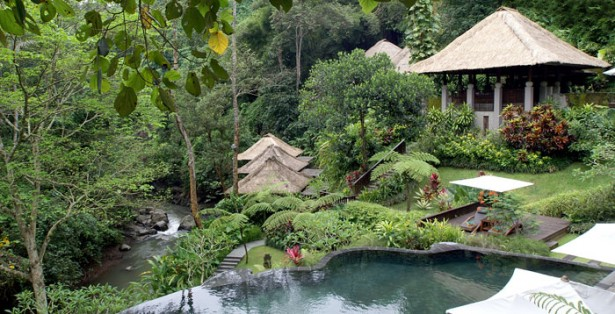 Fresh River Green Lawn Infinity Pool Thatch Huts
