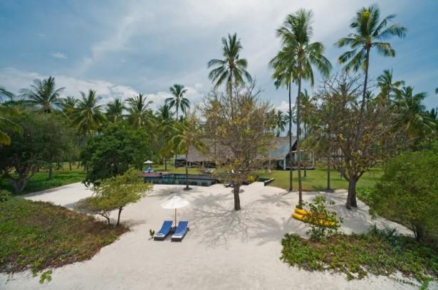 Fresh coconut trees Chaise loungechairs Green courtyard Villa Sapi
