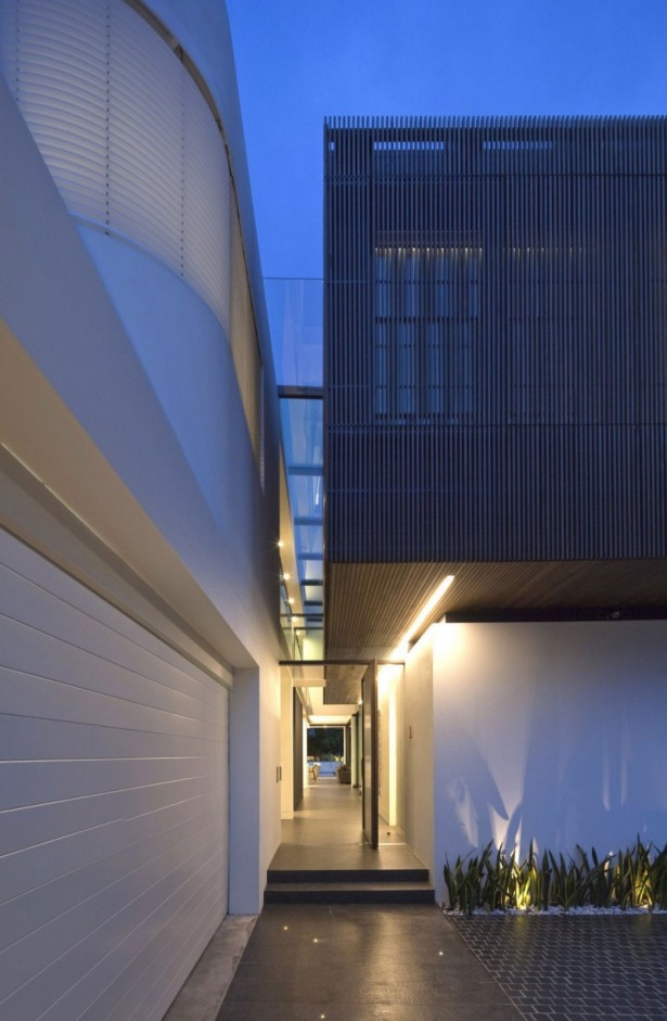 Glossy dark corridor Hidden light Z house Ornamental plant