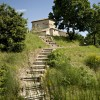 Green Lawn Stone House Stone Stairs Flat Roof
