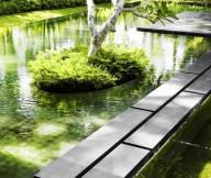 Green Pond Frangipani Tree Tropical Sense Beuatiful Garden