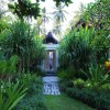 Green garden Unique door Exclusive  Beach Villas design The Lush Jungle