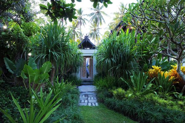 Green garden Unique door Exclusive  Beach Villas design The Lush Jungle
