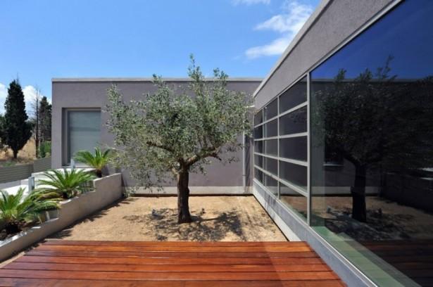 Grey Wall Wide Windows Wooden FLoor Flat Roof