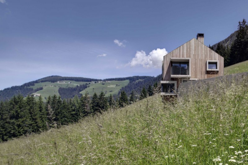 Hillside building Casuarina trees Contemporary wooden house Wooden chimney