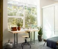 Home Workplace Indoor Plants Grey Rug Wooden Desk Wide Window