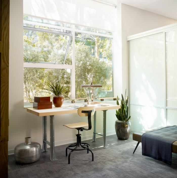 Home Workplace Indoor Plants Grey Rug Wooden Desk Wide Window