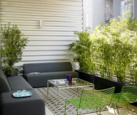 Indoor Plants Grey Sofa Typical Motives Rug Glass Coffee Table Green Chairs