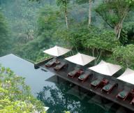 Infinity Pool Tropical Atmosphere Wooden FLoor Frangipani Trees