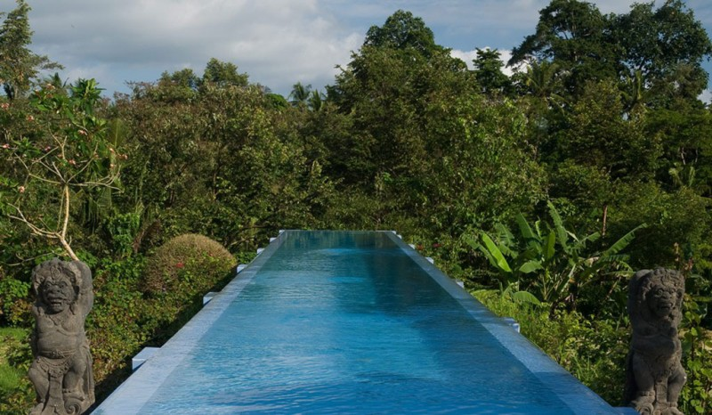Infinity Pool Typical Statue Tropical View Banana Trees