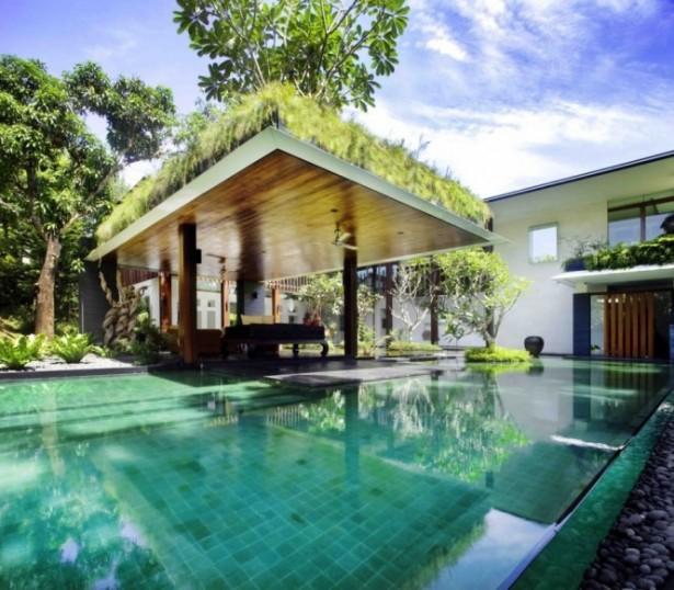 Infinity Pool Wooden Ceiling Hanging Garden Modern View