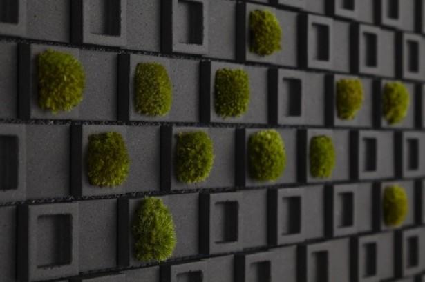 Black Living Wall Backsplash Kitchen Backsplash Ideas