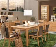 Dining Set Modern Wood Green Rug Modern Dining Rooms