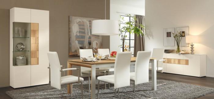 Elegant Contemporary Dining Room Modern Dining Rooms