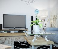 Modern Natural Wood Furnishings Contemporary Living Rooms