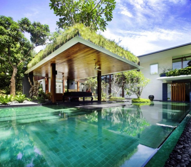 Roof Planting Large Pool Dark Sofa Serene Sun House