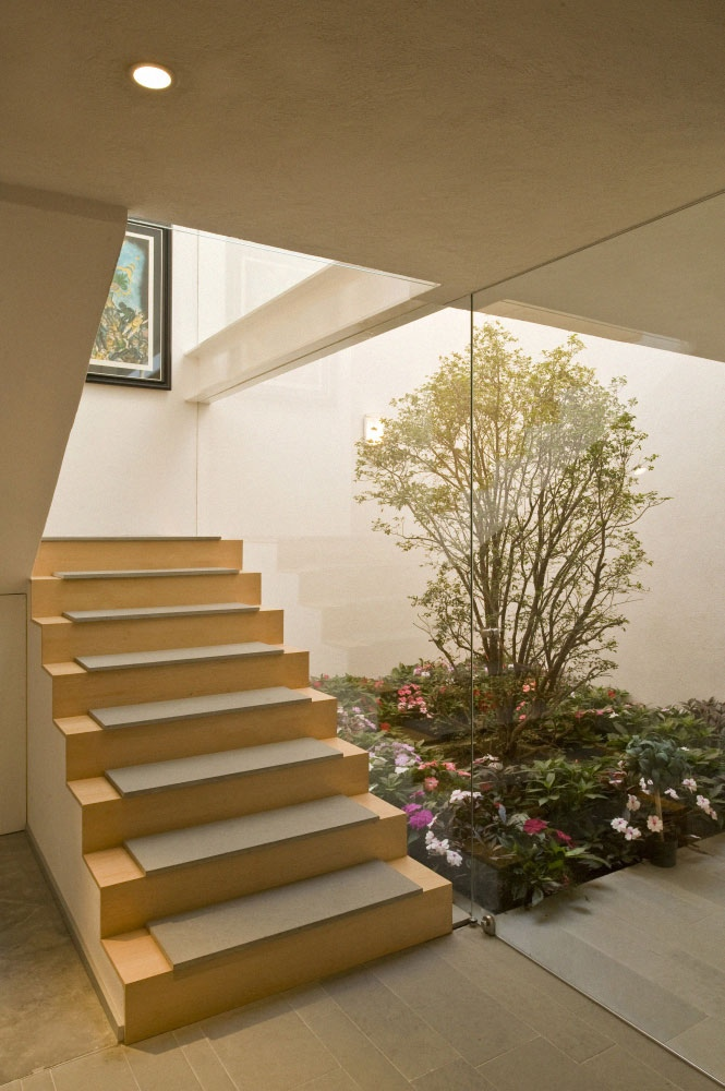 Simple Stairs Courtyards Design Ideas Interior Courtyard With Tree