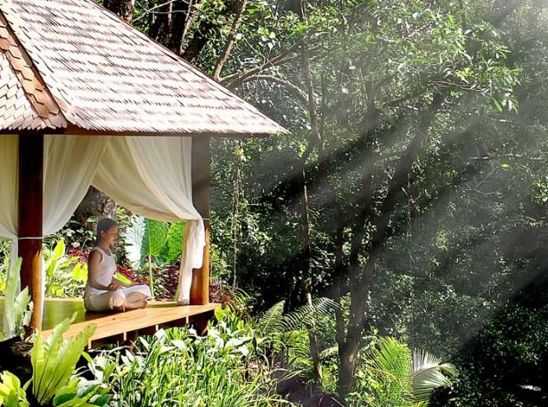 Small Wooden Gazebo Beautiful Tropical Paradise Green View