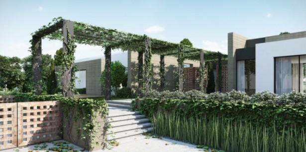 Vine Covered Pergola Ando Studio Designs White Wall