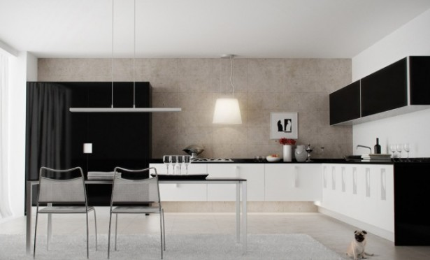 White Ceiling Black White Kitchen Modern Kitchens Ideas