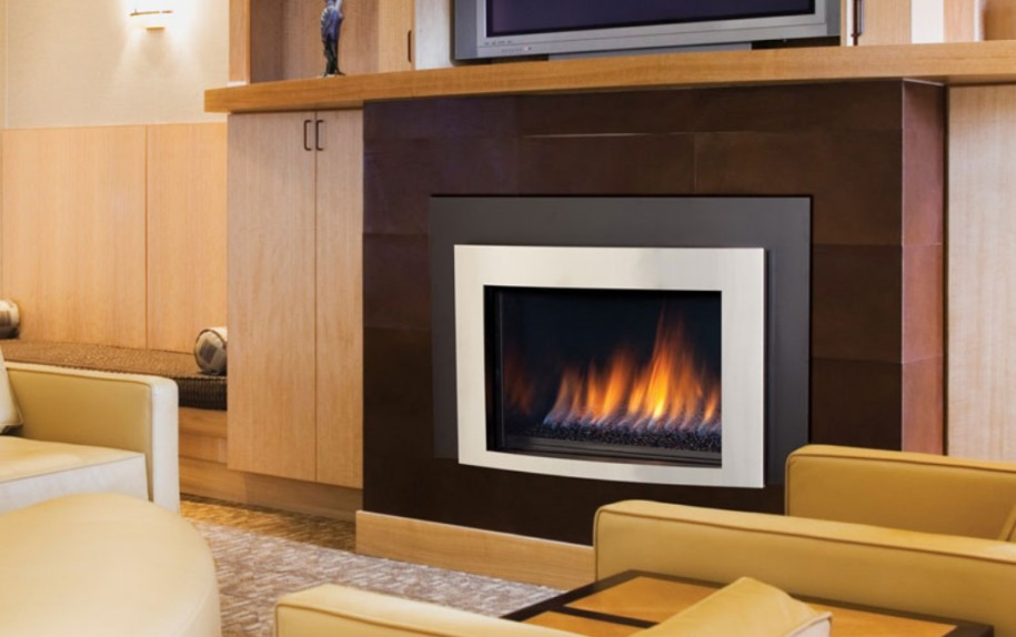 Modern gas fireplace insert for Contemporary fireplace insert